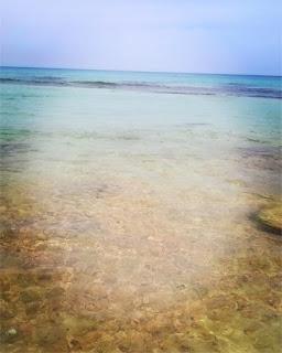شاطئ البحر من تاجوراء