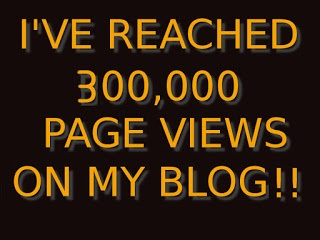 I reached 300,000 views on my blog!